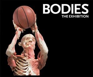 bodiesexhibition